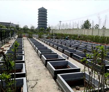 节地生态葬